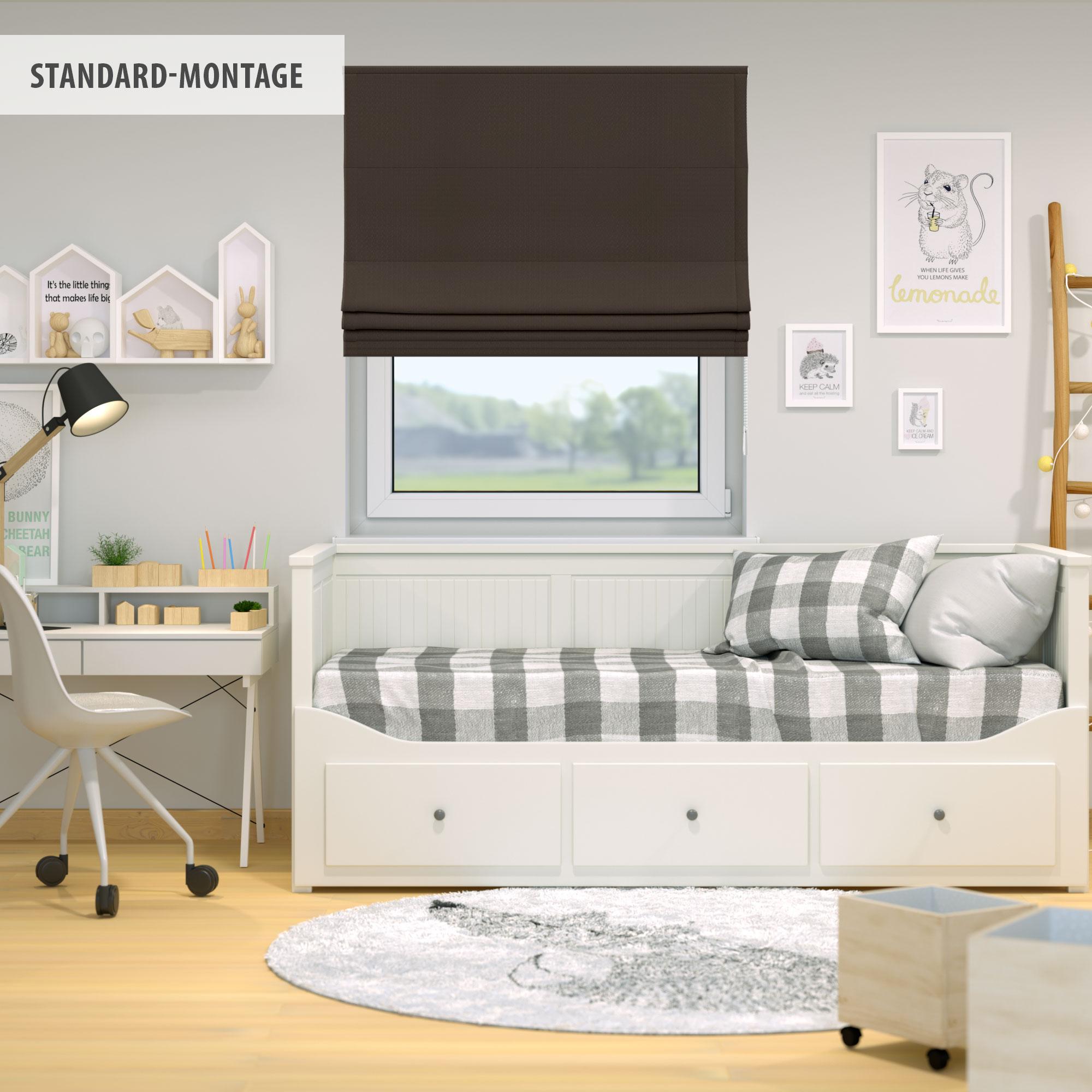 Raffrollo-Faltrollo-Klemmfix-ohne-Bohren-Fenster-Raffgardine-Gardine-VICTORIA-M Indexbild 20