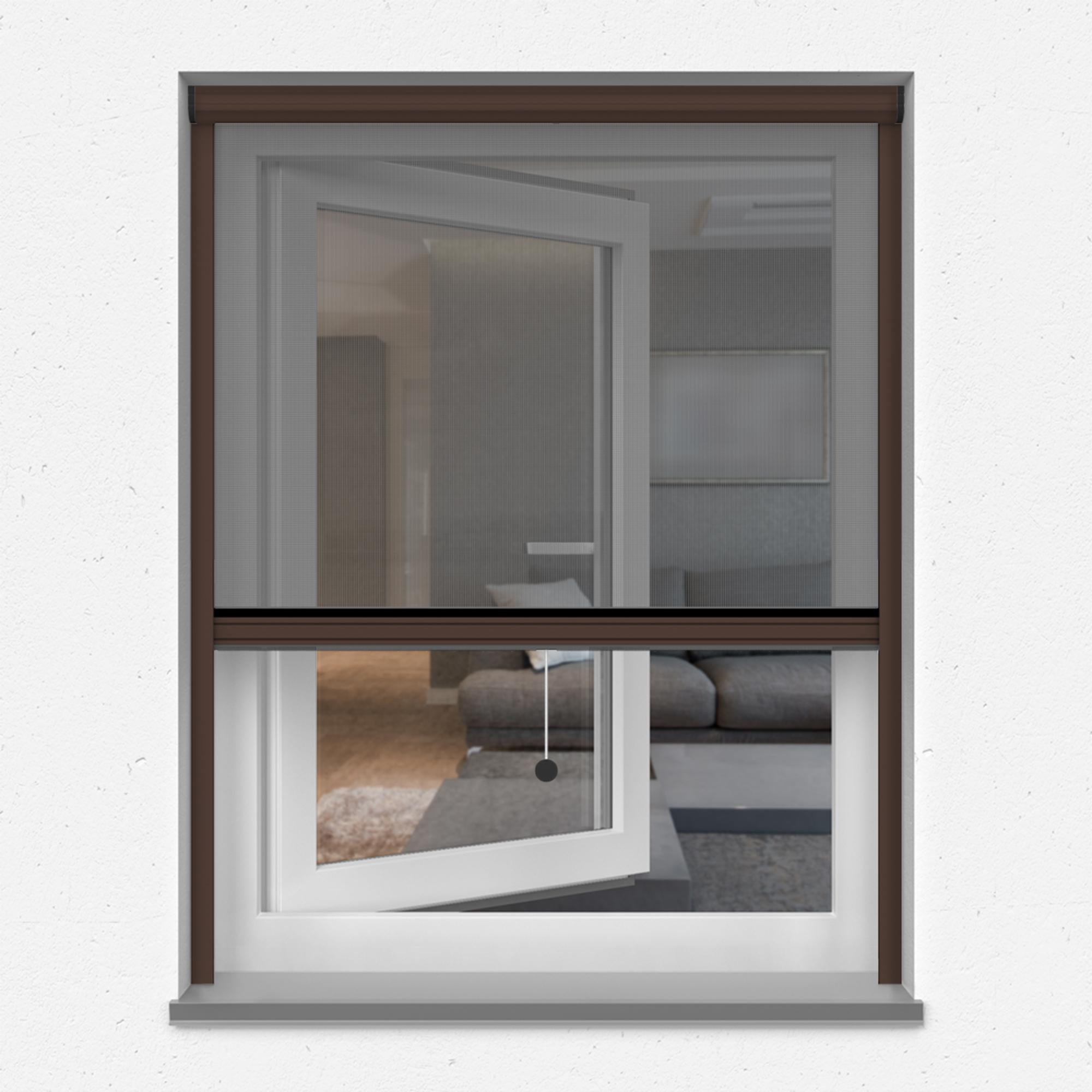 Fliegengitter-Insektenschutz-Rollo-Fenster-Insektenschutzrollo-Alu-Mueckenschutz Indexbild 31