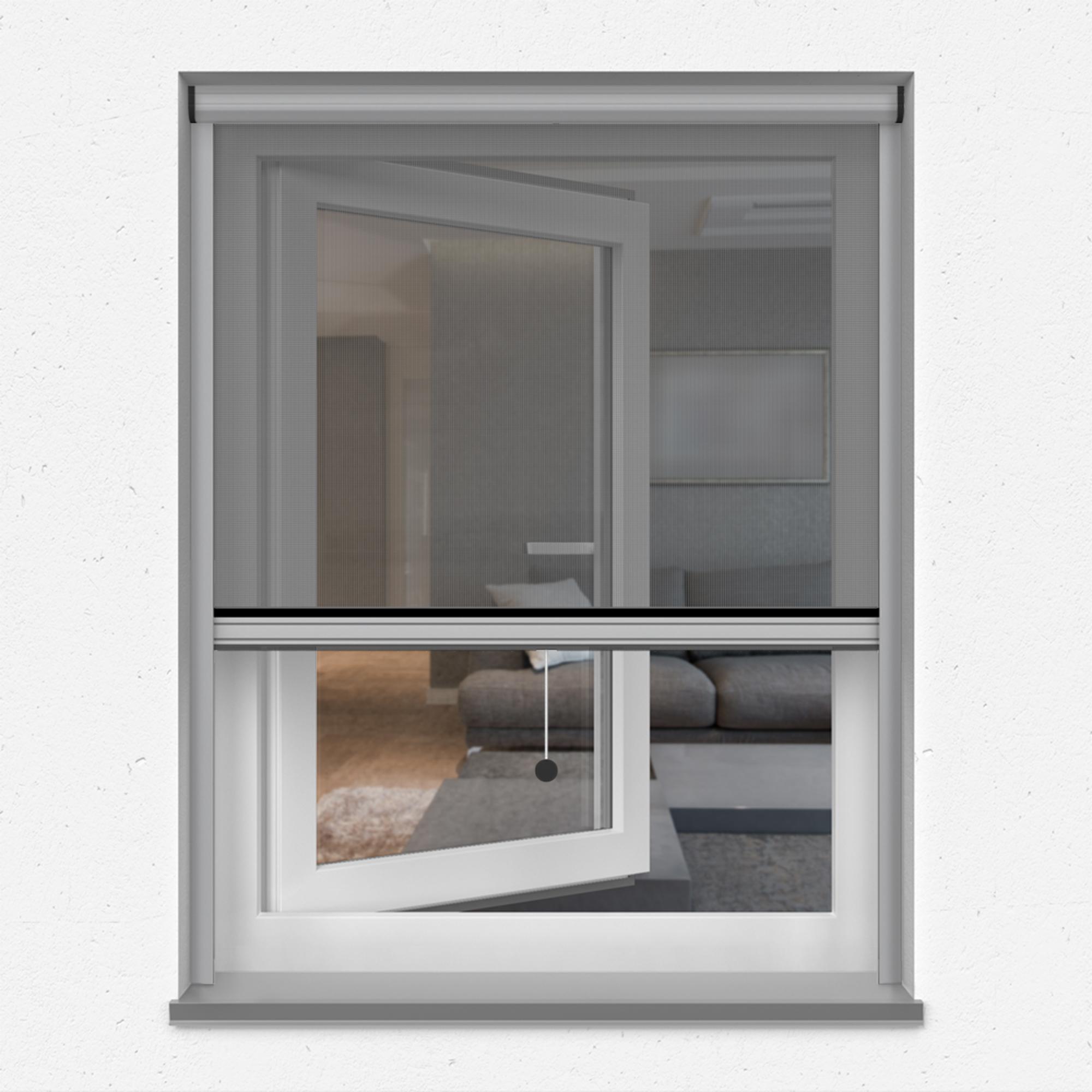 Fliegengitter-Insektenschutz-Rollo-Fenster-Insektenschutzrollo-Alu-Mueckenschutz Indexbild 21