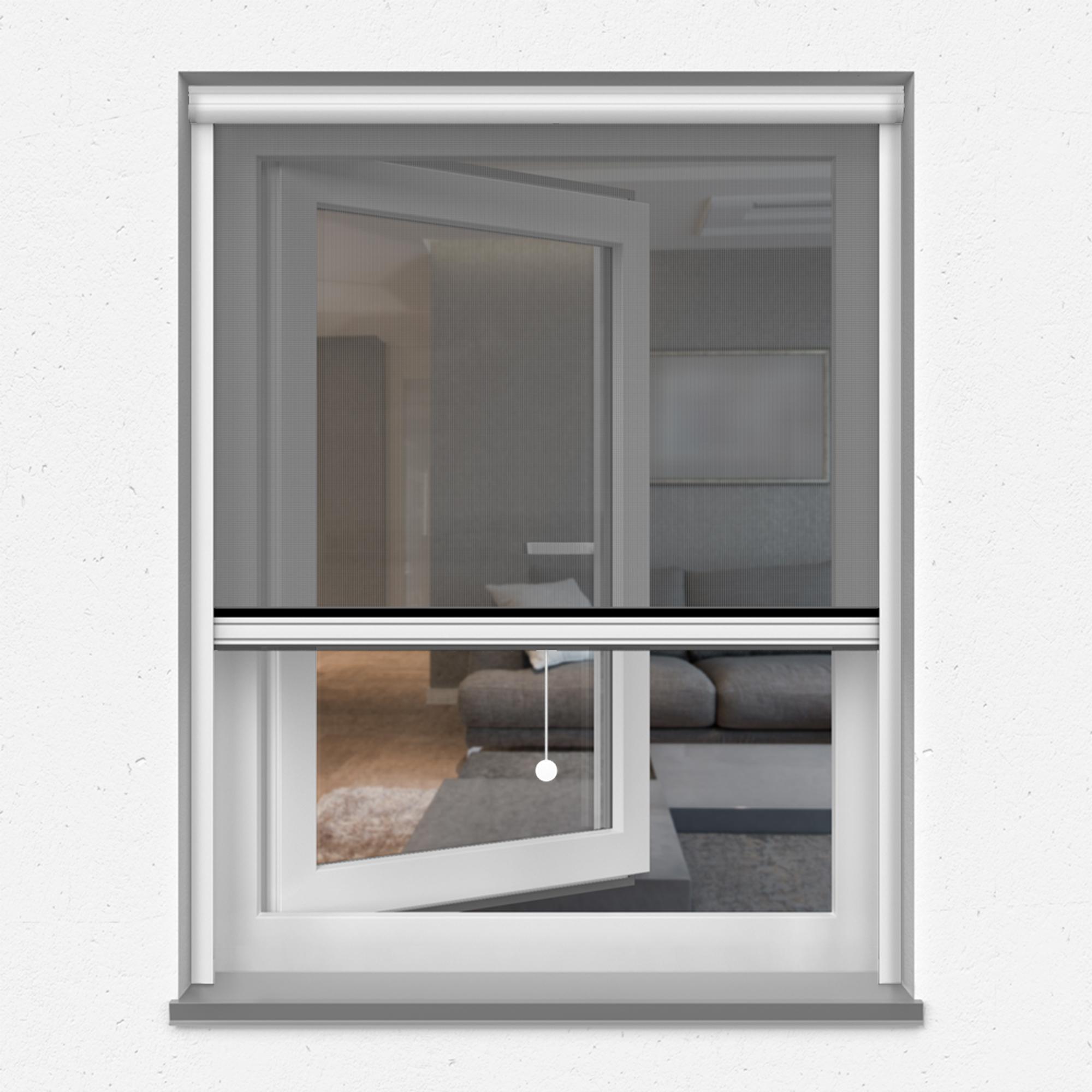 Fliegengitter-Insektenschutz-Rollo-Fenster-Insektenschutzrollo-Alu-Mueckenschutz Indexbild 11